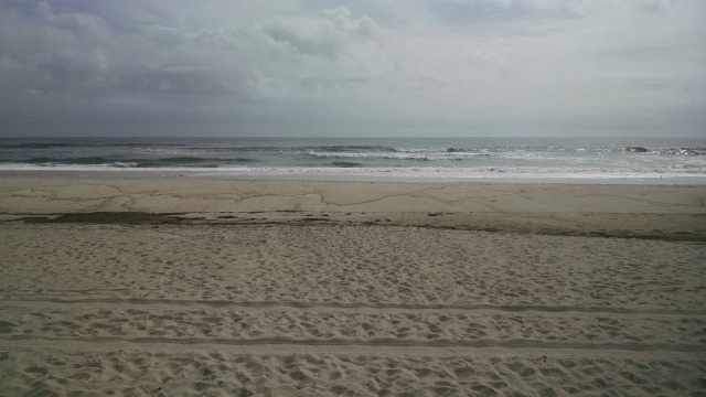 beach near Fire Island